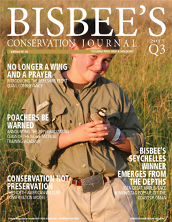 Bisbee's Conservation Journal Cover Image | Issue 03