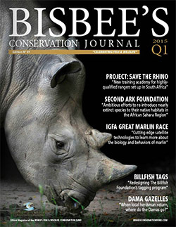 Bisbee's Conservation Journal Cover Image | Issue 01